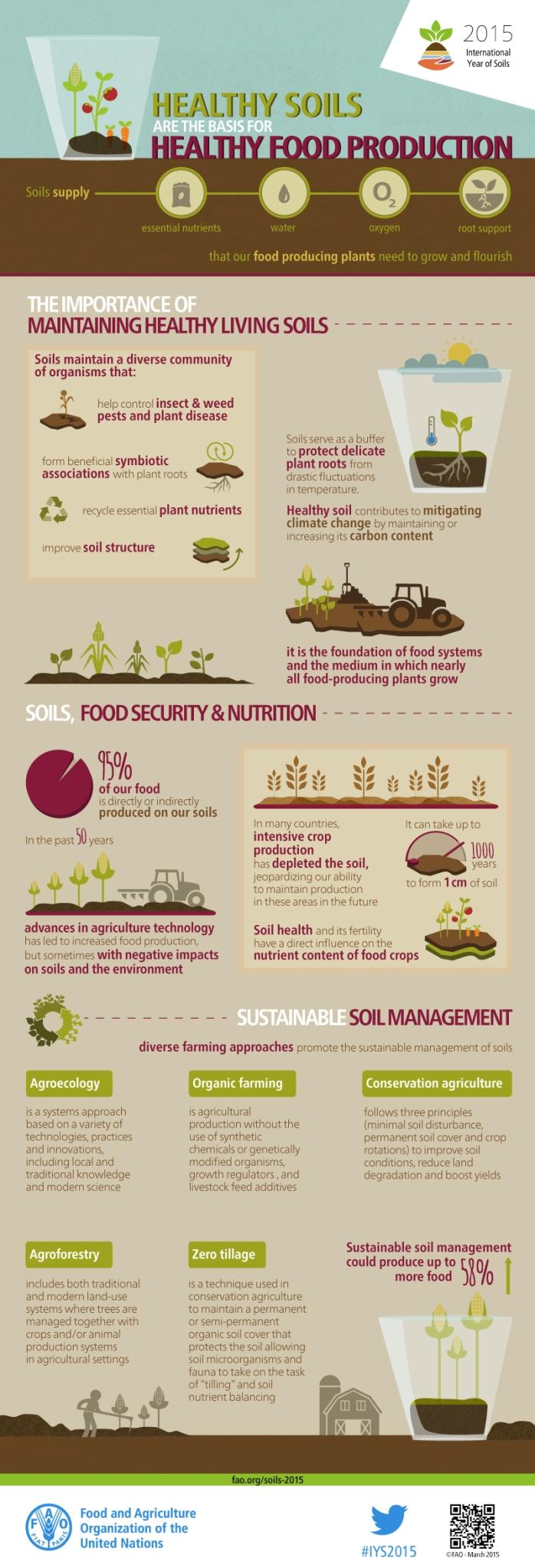 FAO-Infographic-IYS2015-fs2-en